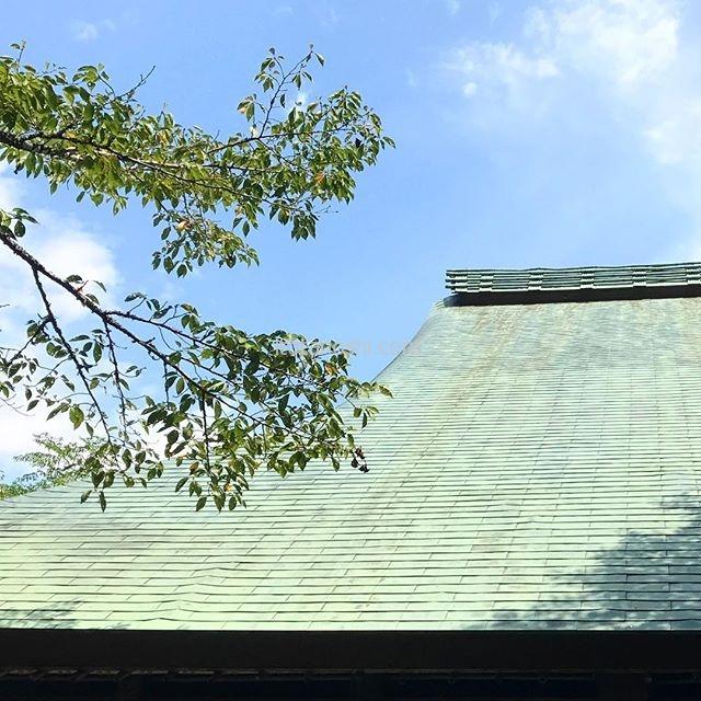 伊豆韮山の江川邸。屋根と青空がきれい。とても立派なお宅でした。#静岡 #伊豆 #伊豆の国 #韮山 #江川邸 #重要文化財 #屋根 #空 #青空 #instalover #instalovers #instatravelling #instatravel